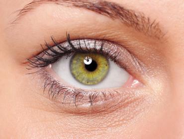 cornea3